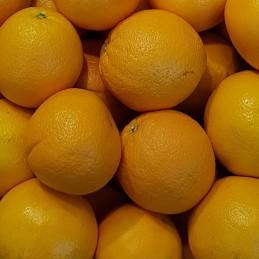 Appelsiner LV