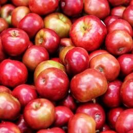 Epler, røde LV