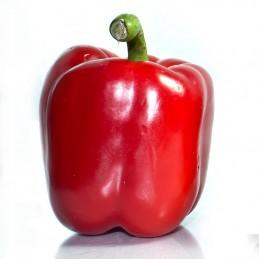 Paprika rød, 1pk