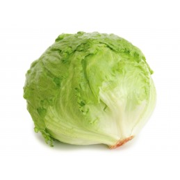 Isbergsalat, 1 stk